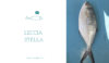 Pescheria Il Piscione Leccia Stella